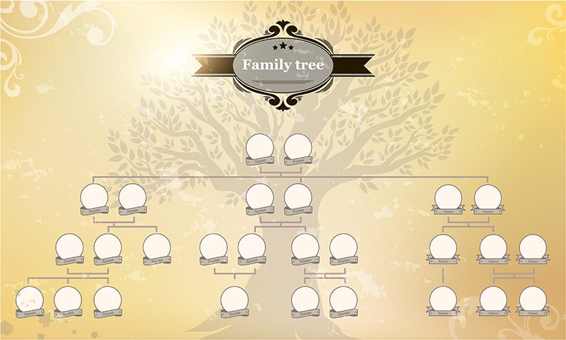 52 Week Genealogy Plan